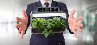 Businesmann holding a Digital vegetal plant connected. View of a Businesmann holding a Digital vegetal plant connected royalty free stock image