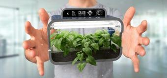 Businesmann holding a Digital vegetal plant connected. View of a Businesmann holding a Digital vegetal plant connected stock photo