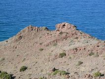 View at Cabo del Gata. Rock scape at Cabo del Gata in Almeria province, Spain Stock Image