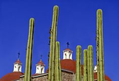 Church of Mitla in the archaeological site of the same name. View of cactus and cupolas of the church of San Pablo Apostol, located within the archaeological royalty free stock images