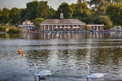 View of the cafe pavilion from the other shore in the background of birds royalty free stock images