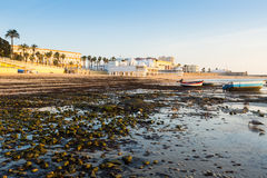 View of Caleta  Beach Stock Photography