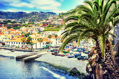 View of Camara de Lobos, small fisherman village, Madeira Stock Images