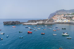 View of Camara de Lobos town with palm tree in the foreground in south of Madeira island, Portugal Stock Images