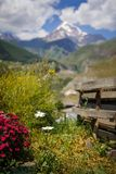 View from the camping to the green mountain valley and snowy top of Kazbegi in Georgia. royalty free stock images