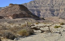 View on canyon of Timna park, Israel Stock Images