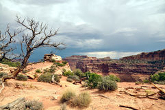 Canyonlands National Park Stock Photos