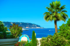 A view of Cap Martin, a palm tree and the sea. An artistic composition of Cap Martin as viewed from Monte Carlo Royalty Free Stock Photography