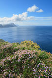 View from Cape of Good Hope Stock Photography