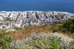 View on Cape Town city Royalty Free Stock Image