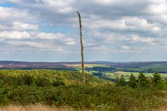 Landscape in the North York Moors Stock Images