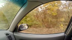 View through car window on autumn forest. View through the window of a car on a forest in autumn. Bare trees, fallen leaves stock footage