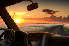 View from car window on the field at sunset Stock Image