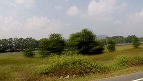 The view from the car window at the forest stock video footage