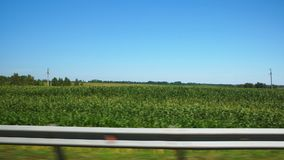 View From A Car Window On Green Fields And Blue Sky stock video footage