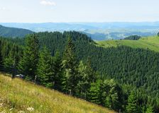 View of the Carpathian Mountains Stock Photography