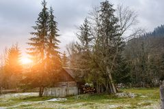 View on the carpathian pinewood house. A View on the carpathian pinewood house Royalty Free Stock Images