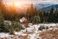 View on the carpathian pinewood house. A View on the carpathian pinewood house Royalty Free Stock Photos