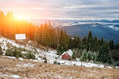 View on the carpathian pinewood houses. A View on the carpathian pinewood houses Royalty Free Stock Image