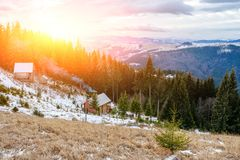 View on the carpathian pinewood houses. A View on the carpathian pinewood houses Stock Image
