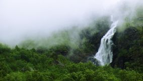 View of cascade waterfall in green forest among mountains. Summer day. Deep fog. Nature. Nobody. stock video footage