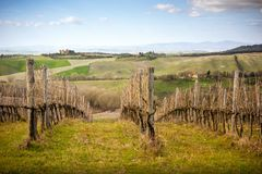 View of Castle of Gallico. Beautiful landscape of hills and vineyard near Asciano in Tuscany, Siena, Italy. The Castello di Gallico, with its five stone and red royalty free stock photo