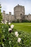 View of the castle of Windsor, England