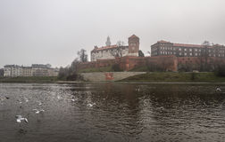 View of Castle near of the river with birds on it. Royalty Free Stock Images