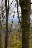 Ruin of Topolcany castle surrounded by trees. View of the castle from the nearby forest Stock Photography