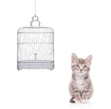 View of a cat and an empty bird cage Royalty Free Stock Photo