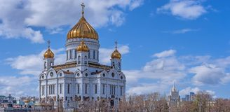 View of Cathedral of Christ the Savior in Moscow. Russia. Stock Photo