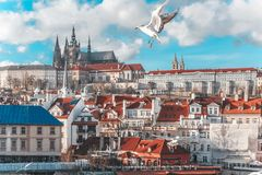 View of the Cathedral of St. Vitus, the Vltava River, Prague, Czech Republic. stock images