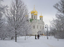 View of the Catherine Cathedral february day. Tsarskoye Selo Royalty Free Stock Photos