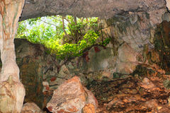 View from the cave Stock Photography