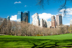View from central park Royalty Free Stock Photo