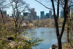 View of central park Royalty Free Stock Photos