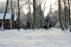 View of the Central park with the first snow. Kaliningrad royalty free stock images