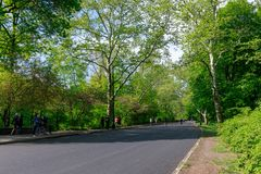View of Central Park in New York City in spring. New york, United States - May 12, 2018 : View of Central Park in New York City in spring Royalty Free Stock Photo