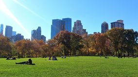 Central park in New York. The view of Central Park in New York and how people are relaxing on green grass stock images