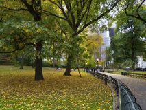 View from Central Park, NewYork. View from Central Park, New York, promenade with benches, beautiful trees and Manhattan high rises in the back Stock Images