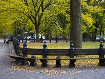 View from Central Park, NewYork. View from Central Park, New York, promenade with benches, beautiful trees Royalty Free Stock Photo