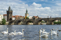 View of the Charles Bridge in Prague Stock Photography