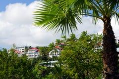 View of Charlotte Amalie, St. Thomas USVI Stock Images