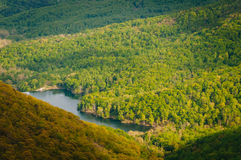 View of the Charlottesville Reservoir from Moorman's River Overl Stock Photos