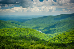 View of the Charlottesville Reservoir from Moormans River Overlo Royalty Free Stock Image
