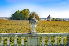 View over vineyard to Chateau Latour in Bordeaux, France Stock Photography
