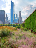 View of Chicago from Grant Park Stock Photos