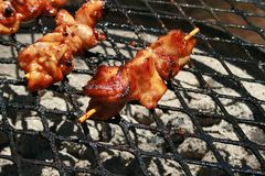 CHICKEN KEBABS ON THE GRID OVER COOKING FIRE. View of chicken kebabs roasting on glowing embers of an outdoors cooking fire Stock Image