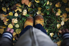 View of a child standing in fallen leaves Royalty Free Stock Photos