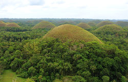 View of the Chocolate Hills, Bohol island Royalty Free Stock Photo